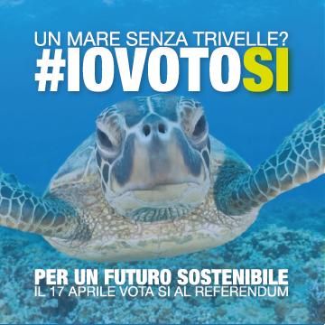 COVER-FB-IOVOTOSI-03
